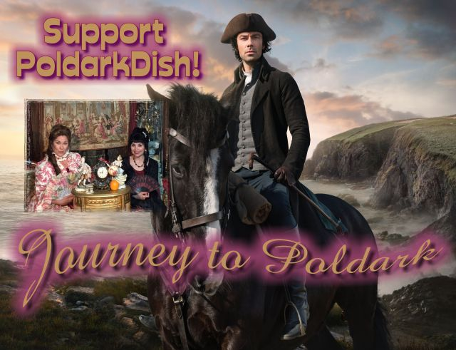 supportpoldarkdish