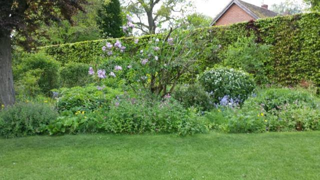 Chawton garden 2